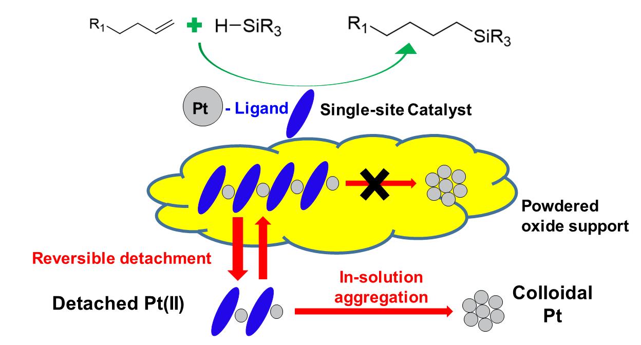 Alkene Hydrosilylation on Oxide-supported Pt-ligand Single-site Catalysts
